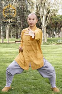 Shaolin Ba Duan Jin – Las 8 piezas de Brocado