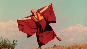 https://artesmarcialesgt.files.wordpress.com/2013/06/0eadf-matthieu_ricard_01_300.jpg